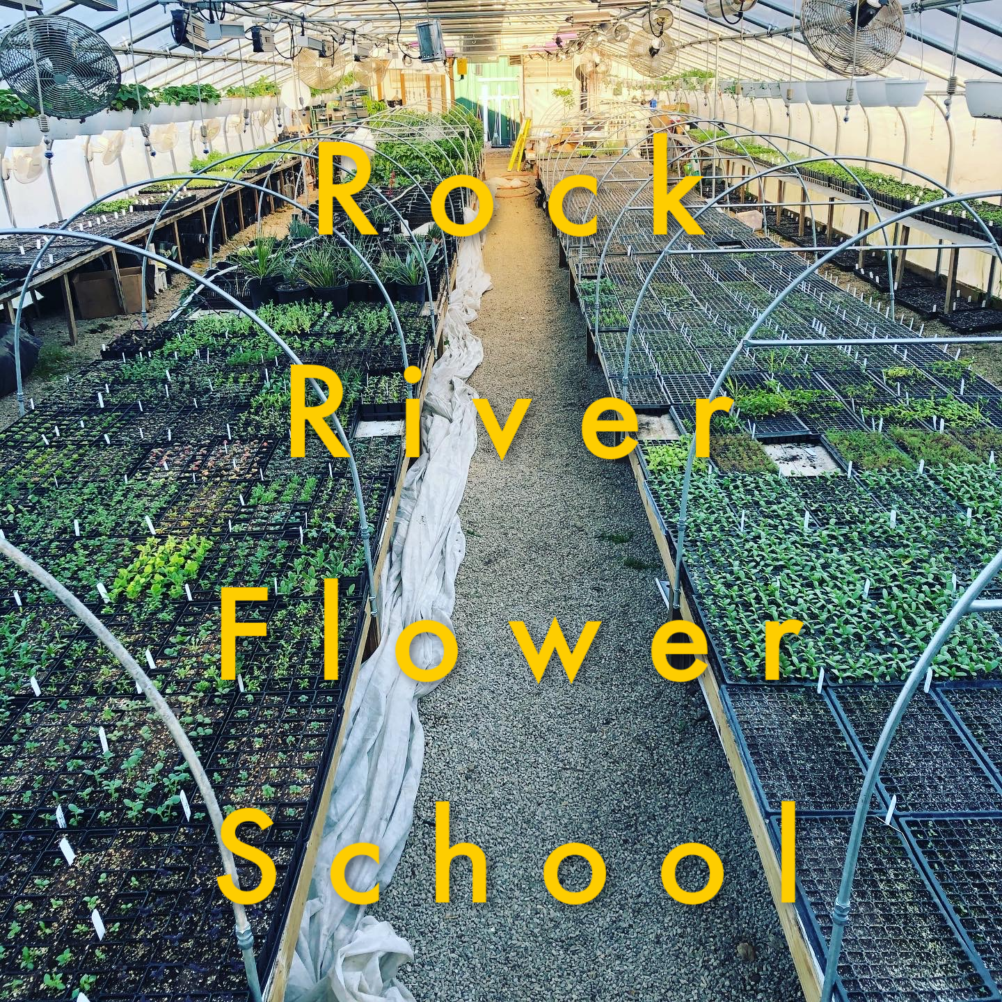 Full Flower School Courses Rock River Farm
